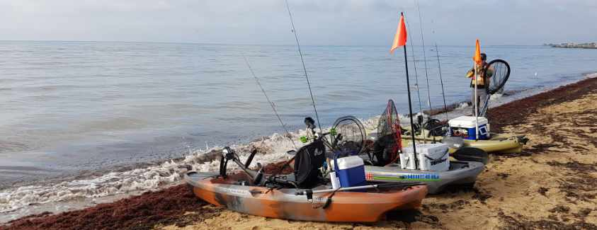Campbells Cove Fishing Guide