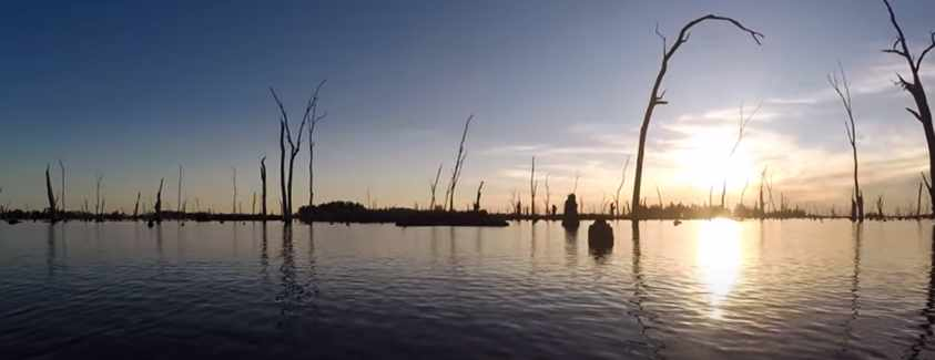 Lake Mulwala Fishing Guide