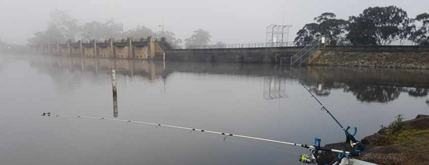 Lauriston Reservoir Fishing Guide
