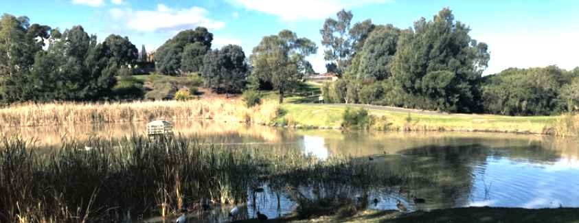 Roxburgh Park Fishing Guide