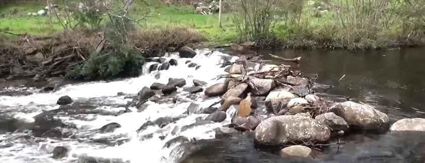 Rubicon River Fishing Guide