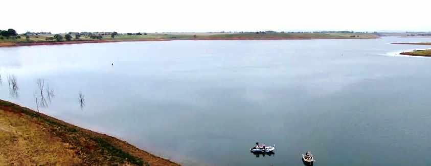 Tullaroop Reservoir Fishing Guide