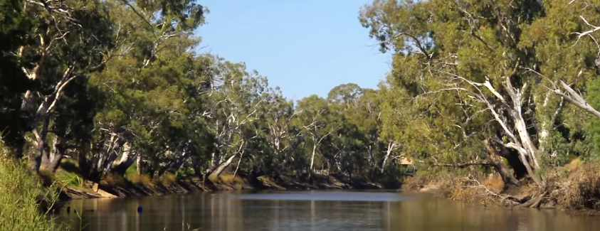 Wimmera River Fishing Guide