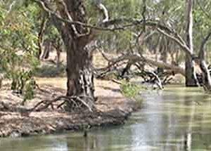 brokenriver