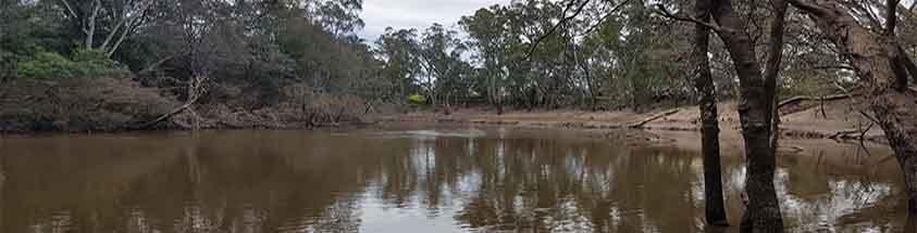Goulburn River fishing