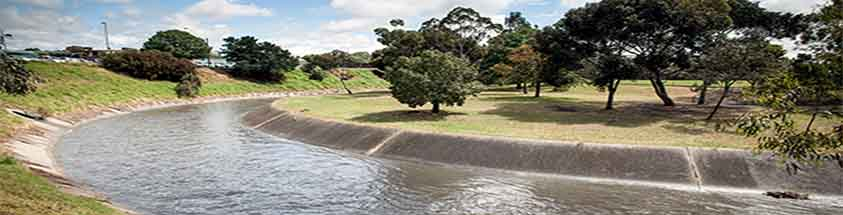 moonee ponds creek trial fishing