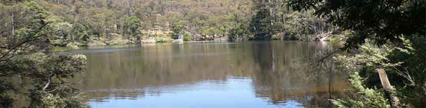 wombat reservoir fishing