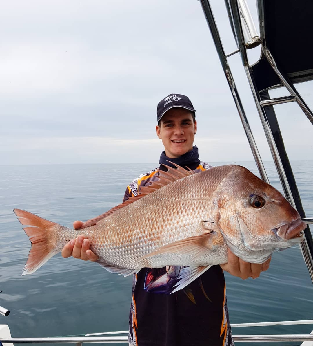 Port Phillip Bay Snapper