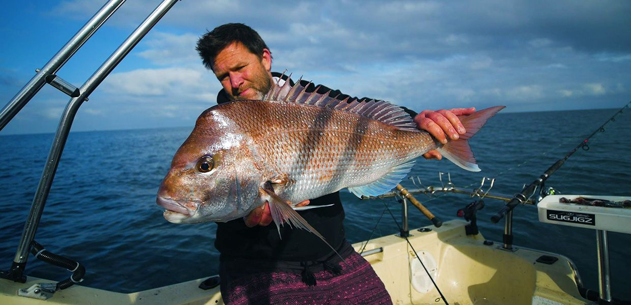 FishingMad Banner Snapper