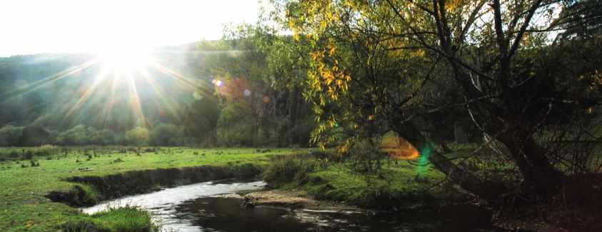 Toorongo River