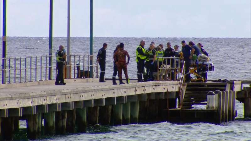 Scuba Diver killed by Boat