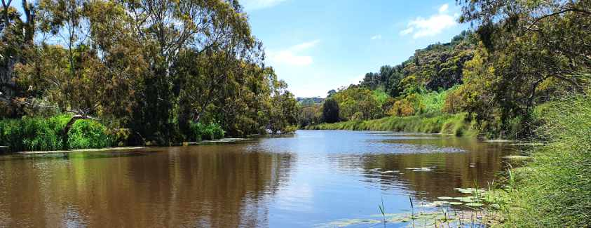Barwon River Fishing Guide 2020