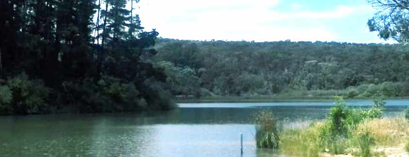 St Georges Lake Fishing Guide