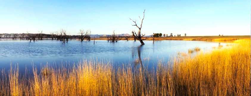 Taylors Lake Fishing Guide